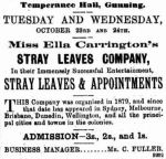 Stray Leaves advert [GH 20 Oct 1883, 5]