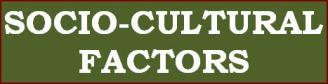 Socio-Cultural Factors